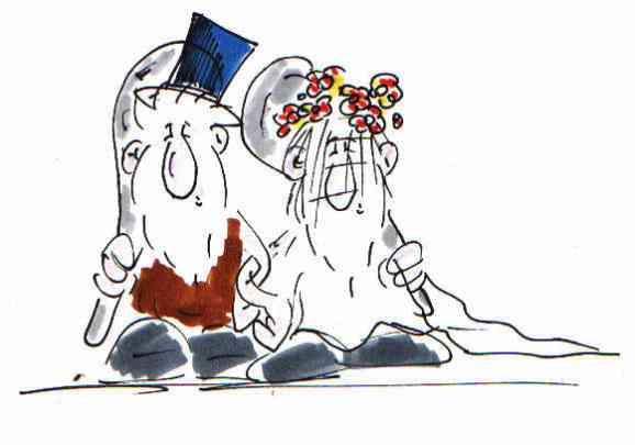 Kalle Mit Der Keule Am Dienstag Hochzeitstorte Oder Cartoon